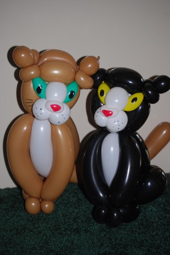 8 Simple Steps How To Make A Kitty Cat Balloon Animal Balloon Guide